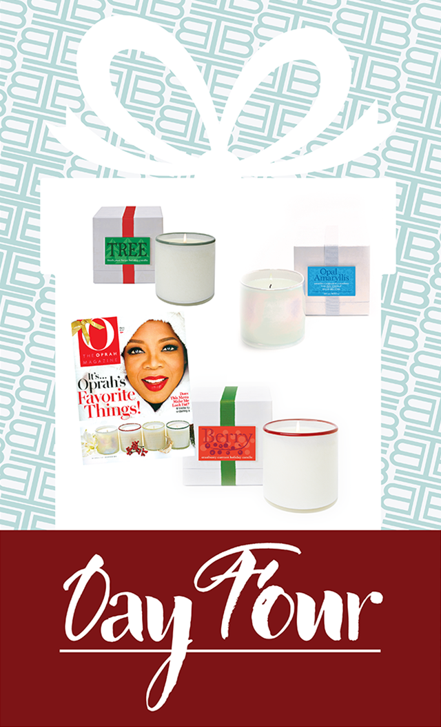 76d2bb6790d Day 4: Enter IBB's 12 Days of Giveaways to Win! | IBB Design